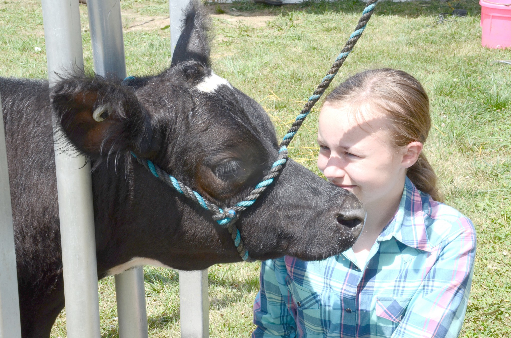 In addition to Junior Fair agricultural displays, judging and events, the Wood County Fair, set for Aug. 2-9, will include food, entertainment, amusement rides and more. (Photo by Ken